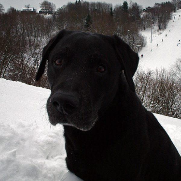 Luca im Winterurlaub