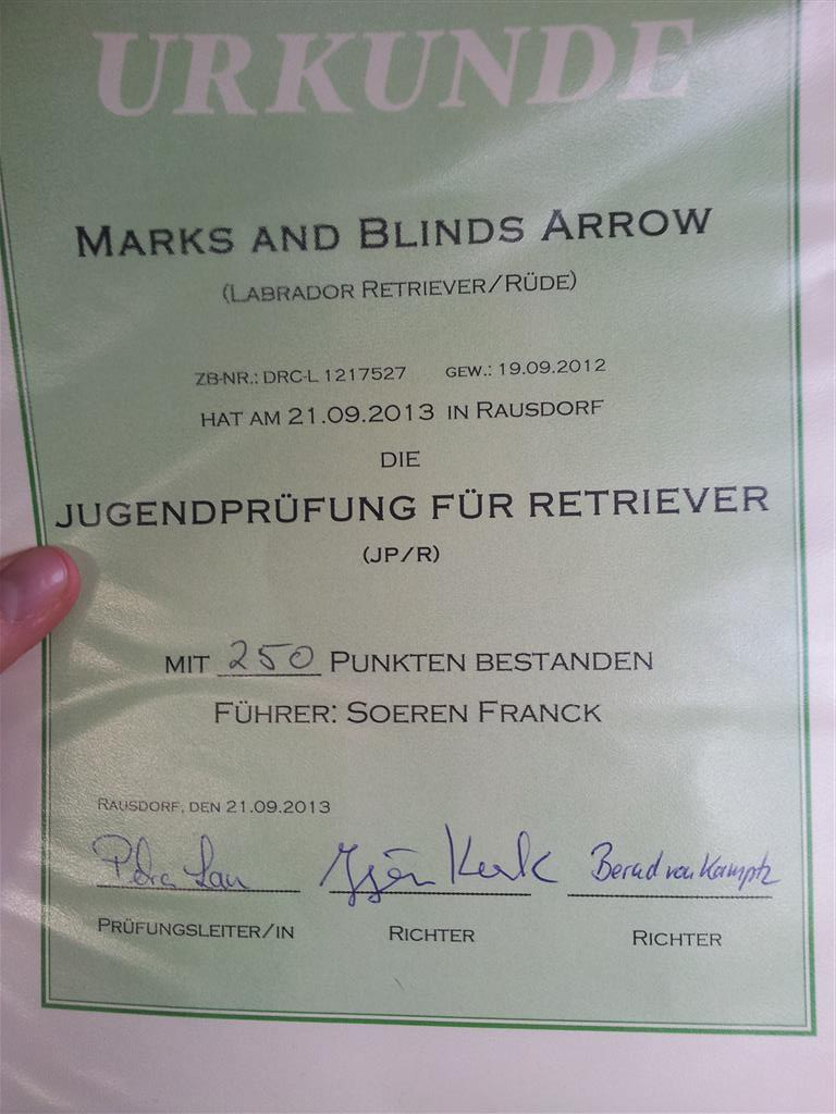 JPR Marks And Blinds Arrow
