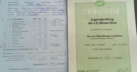 Ida SuchenSieg JPR