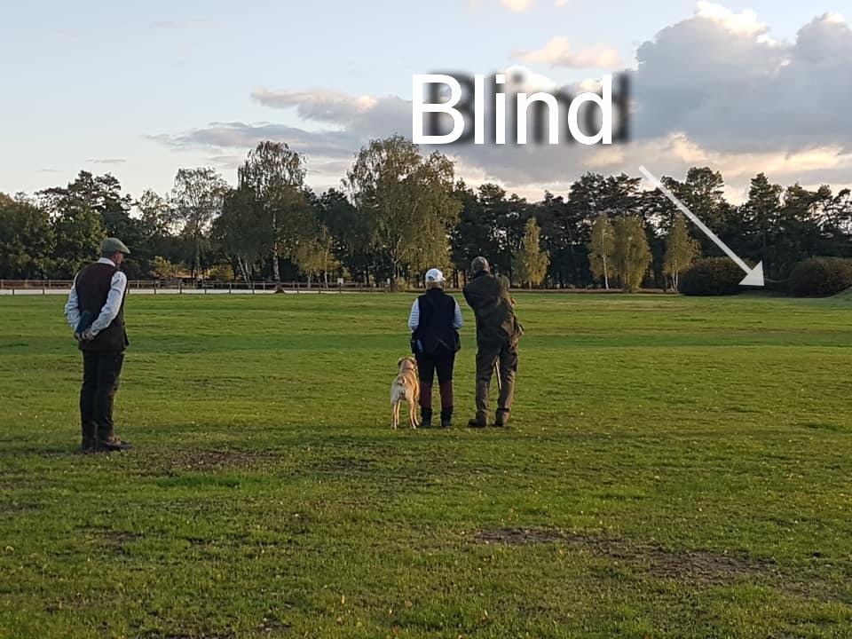 Das Stechen: Schicken auf ein Blind